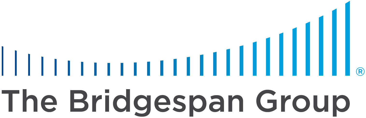 Bridgespan 2017 Annual Report